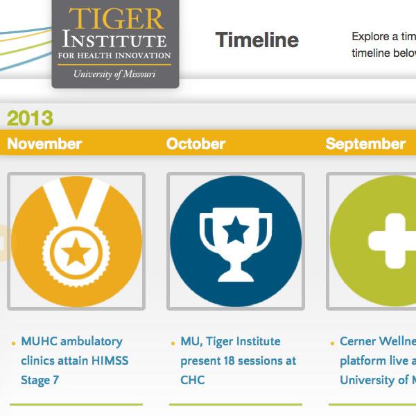 portfolio_tiger-institute4