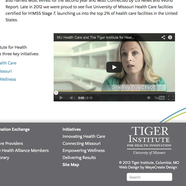 portfolio_tiger-institute7